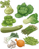 Vegetables III. Third set of 10  illustration of vegetables Royalty Free Stock Photography