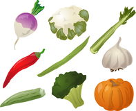 Vegetables illustration Stock Photo
