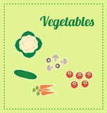 Vegetables. Illustrations of vegetables. Vectors. Green Stock Photo