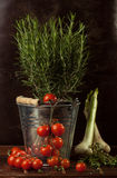 Vegetables In Metal Bucket Royalty Free Stock Photography