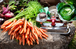 Vegetables at Indian market Stock Images
