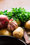 Vegetables ingredients for preparing healthy vegetarian meal, potatoes, onions, garlic, parsley Stock Image