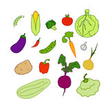 Vegetables isolated Royalty Free Stock Photos