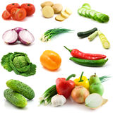 Vegetables isolated on the white Stock Photography