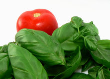 Vegetables for italian food. Tomato, basil (Spice vegetable for italian food Royalty Free Stock Photo