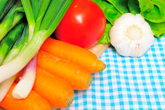 Vegetables on a kitchen cloth. Closeup of most common vegetables on a kitchen cloth Stock Images