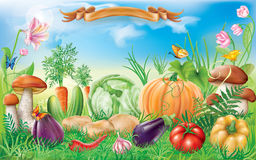 Vegetables in a landscape Stock Photo