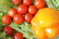 Vegetables on lettuce leaves. Peppers and tomatoes on lettuce leaves. Top view Stock Photography
