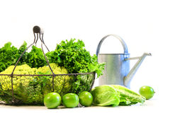 Vegetables and limes Stock Images