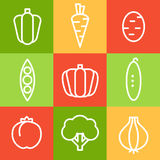 Vegetables in Line Art Style. Vector Illustrations Stock Photo