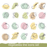 Vegetables line icons Royalty Free Stock Image