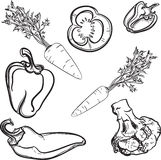 Vegetables, lines, drawn, stylized, vegetables, vector Royalty Free Stock Photo