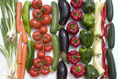 Vegetables lineup on white background. Cauliflower, tomato, pepper, eggplant, cucumber Royalty Free Stock Photos