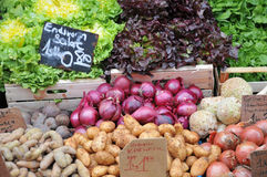 Vegetables on the market Royalty Free Stock Image