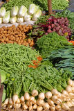 Vegetables on market in asia. Heap of various vegetables on market in asia Stock Image