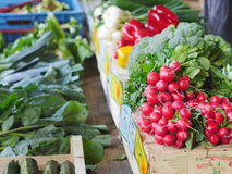 Vegetables market Royalty Free Stock Image