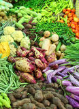 Vegetables on market in india. Heap of various vegetables on market in asia Stock Photo
