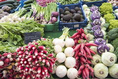 Variety of fresh vegetables on market. Kohlrabies, radishes, beetroot, romanesco broccoli and other vegetables on market stall Royalty Free Stock Photography