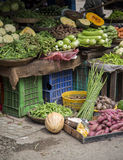 Vegetables on the market in Mumbai Stock Images