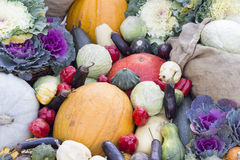 Vegetables at market. Organic vegetables at outdoor market Royalty Free Stock Image