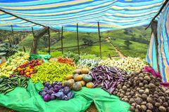 Vegetables market stall, Sri Lanka Royalty Free Stock Photo