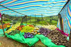 Vegetables market stall, Sri Lanka Stock Photo