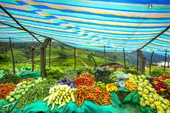 Vegetables market stall, Sri Lanka Stock Photography
