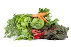 Vegetables Mix Stock Photography