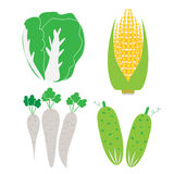 Vegetables with nutritional value Stock Images