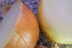 Vegetables onion close-up. Two onions close-up photo Stock Image