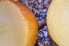 Vegetables onion close-up. Two onions close-up photo Stock Photo