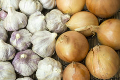 Vegetables. Onion and garlic, close up Royalty Free Stock Image