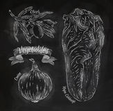 Vegetables onion, napa cabbage, olives chalk. Vegetables drawn in chalk on a blackboard set, onion, napa cabbage, olives Royalty Free Stock Photos