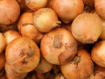 Vegetables  onions Royalty Free Stock Images