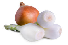 Vegetables onions isolated Royalty Free Stock Images