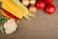 Vegetables: onions, peppers, cabbage, tomatoes, corn Stock Images