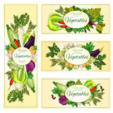 Vegetables organic vegetarian food banners Royalty Free Stock Image