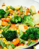 Vegetables in the pan Stock Images
