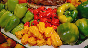 Vegetables, paprika, bell peppers of different varieties. Yellow, green, red. Concept of healthy eating Stock Photography
