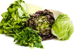 Vegetables - parsley, lettuce, iceberg Royalty Free Stock Photography