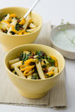 Vegetables Pasta Salad Royalty Free Stock Images