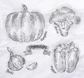 Vegetables pepper, pumpkin, garlic, broccoli Royalty Free Stock Images