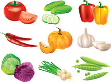 Vegetables photo-realistic set Royalty Free Stock Photo