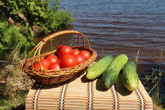 Vegetables for picnic Stock Image
