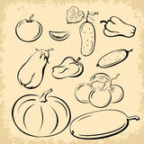 Vegetables Pictograms Set Stock Photos