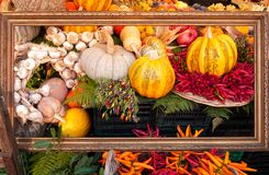 Vegetables in picture frame. Artistic arrangement of colorful vegetables in gilded picture frame in the market royalty free stock images
