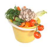 Vegetables  in a plastic bucket. Vegetables lay in a plastic bucket Royalty Free Stock Images
