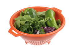 Vegetables in plastic colander Royalty Free Stock Photography