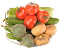 Vegetables on a plate. Tomatoes, celery, cucumbers, radish lie on a table Stock Photos