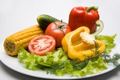Vegetables on the plate Stock Photos